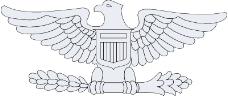 军队徽章0116