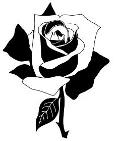 鲜花0439