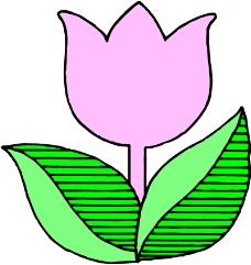 鲜花0128